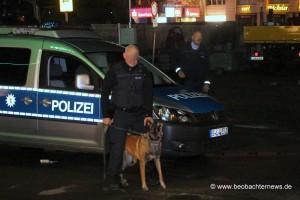 Polizeihunde_1600x1068