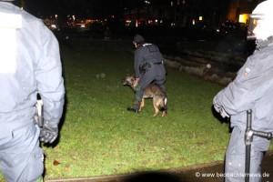 Hunde gegen NazigegenerInnen
