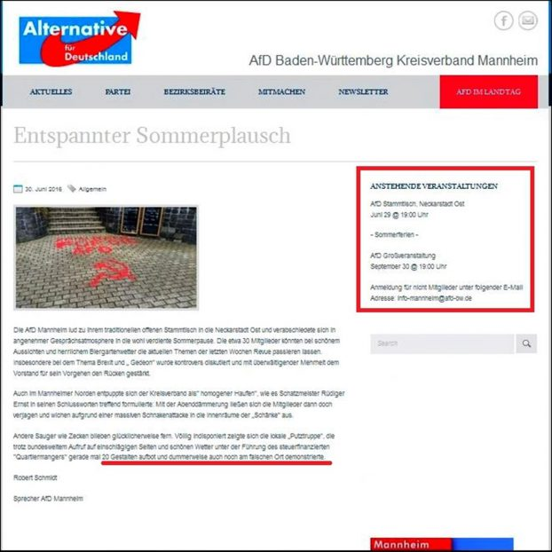 AfD Mannheim homepage (Copy)